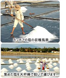 カンホアの塩の収穫風景&集めた塩を天秤棒で担いで運びます